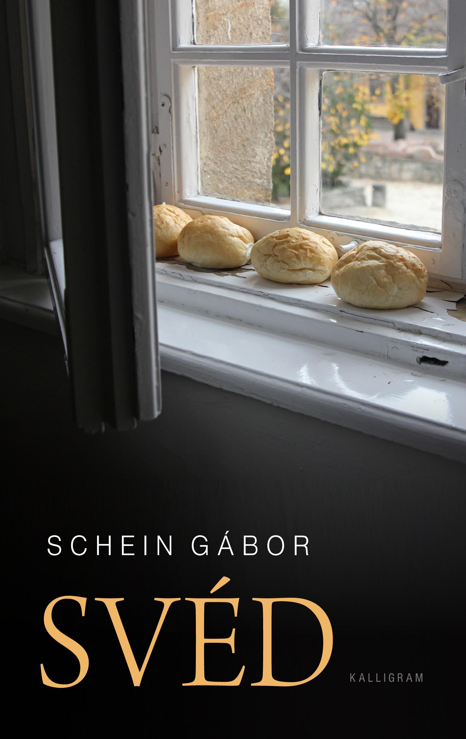 $-SCHEIN-G_Sved_COVER.indd